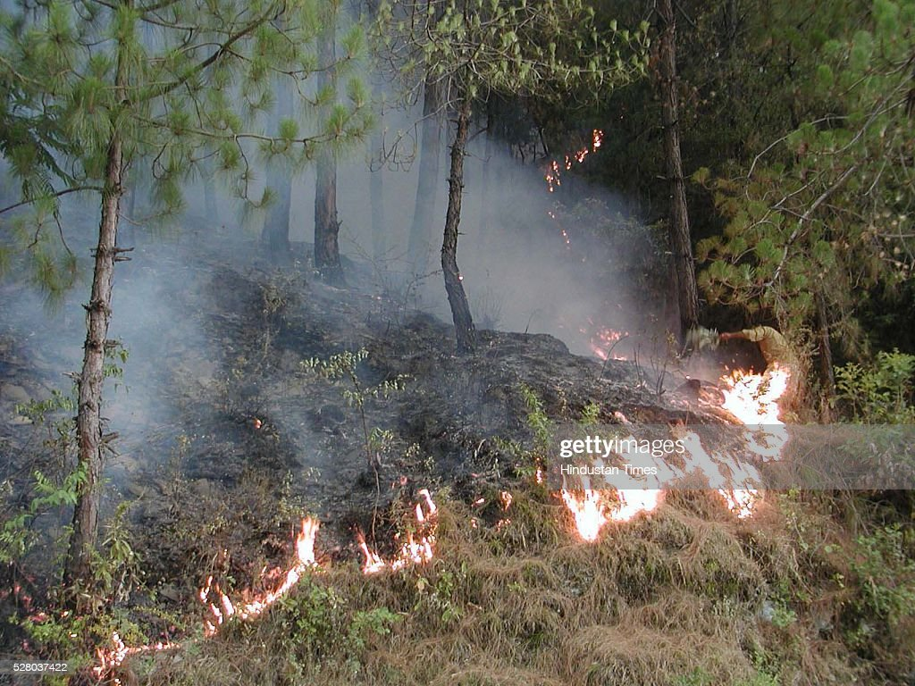Fire in the jungles of Mandi district, on May 3, 2016 in Himachal Pardesh, India. After Uttarakhand and Himachal, forest fires reported from Bathuni and Gambhir in Rajouri, J&K. The worst hit areas in Himachal include popular tourist attractions like Solan, Sirmour, Shimla and Mandi.