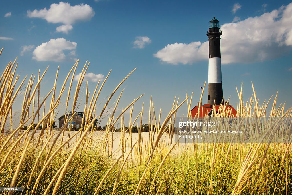 Fire Island Lighthouse Through the Reeds