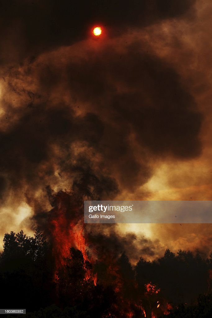 Fire rages through De Hoop farm on January 29, 2013, in Paarl, South Africa. No firemen were present as the veld fire swept through the entire Boland region in the Western Cape.