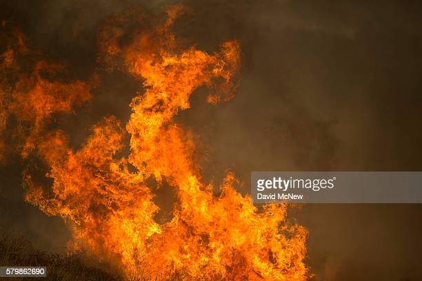 Fire spreads in Placerita Canyon at the Sand Fire on July 24 2016 in Santa Clarita California Tripledigit temperatures and dry conditions are fueling...