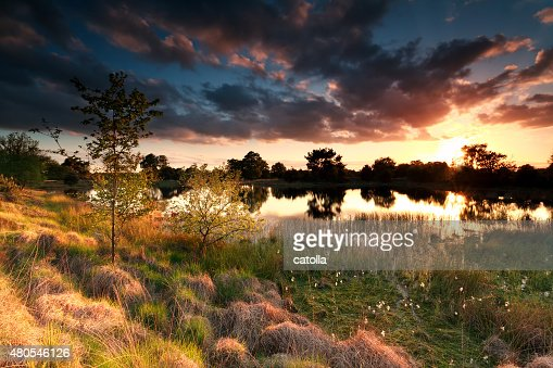 fire sunset on wild lake : Stock Photo