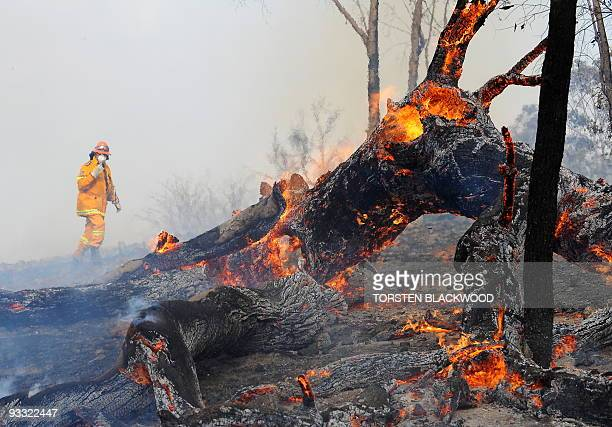 A firefighter approaches a bushfire near the town of Rylstone northwest of Sydney on November 22 2009 Hundreds of residents in eastern Australia were...