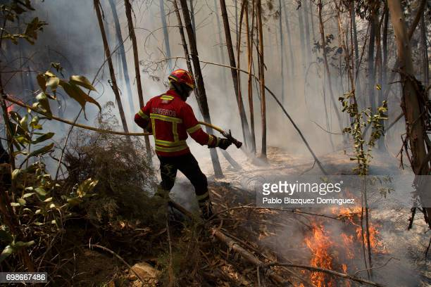 A firefighter battles a fire after a wildfire took dozens of lives on June 20 2017 near Picha in Leiria district Portugal On Saturday night a forest...