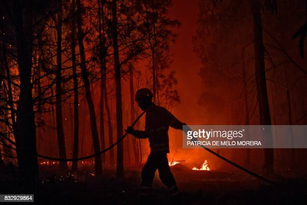 TOPSHOT A firefighter carries a hose during a wildfire at Vale de Abelha village in Macao on August 16 2017 / AFP PHOTO / PATRICIA DE MELO MOREIRA