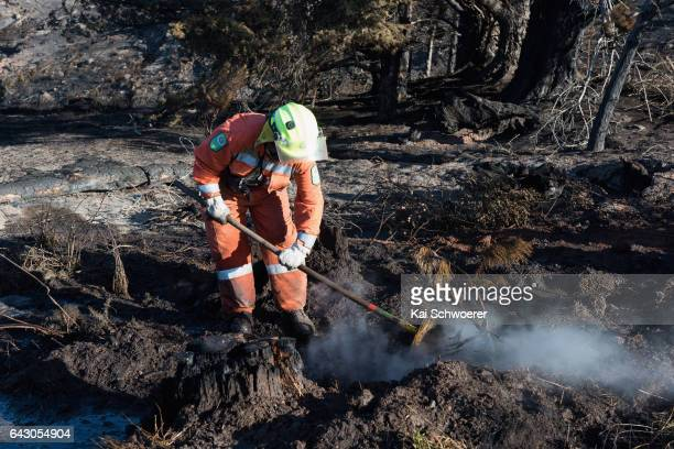 A firefighter digs out hotspots on February 20 2017 in Christchurch New Zealand Firefighters continue to work to contain fires that began in the Port...