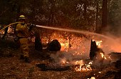 A firefighter douses flames from a backfire during the Valley fire in Seigler Springs California on September 13 2015 The governor of California...