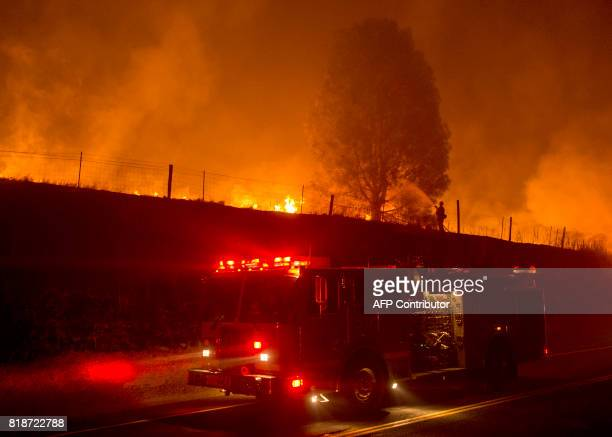 A firefighter douses flames on a tree as the Detwiler fire rages on near the town of Mariposa California on July 18 2017 California has suffered...