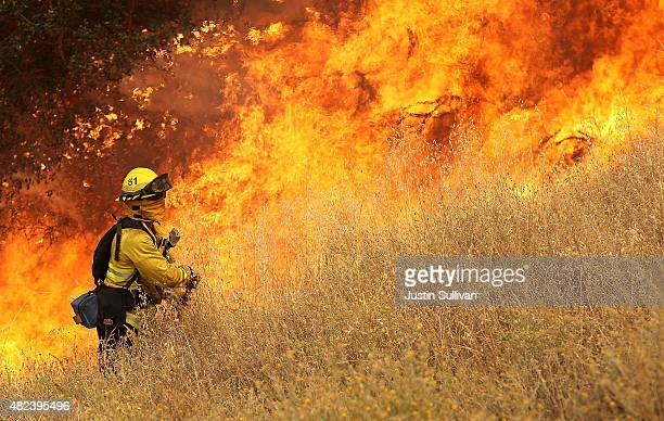 A firefighter from Windsor California walks next to a wall of flames as he starts a back fire in tall dry grass while battling the Rocky Fire on July...