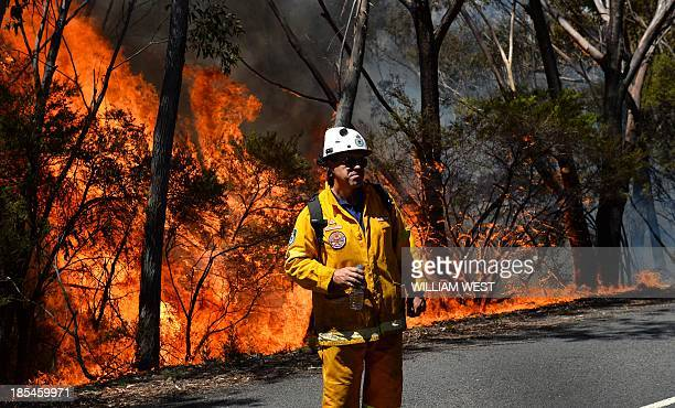 A firefighter monitors a back burn near Mount Victoria in the Blue Mountains on October 21 as volunteer fire brigades race to tame an enormous blaze...