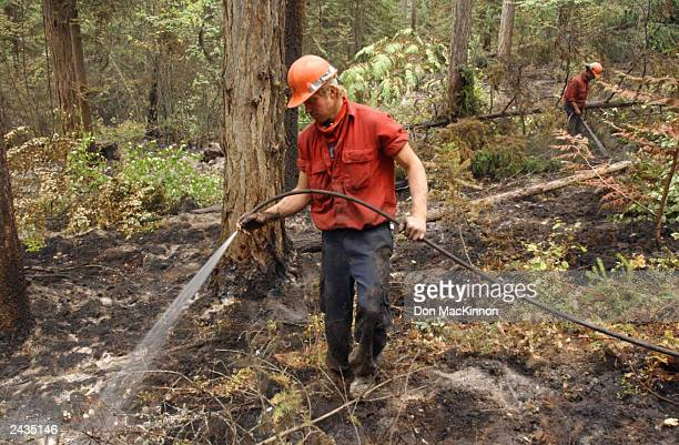 Firefighter Russ Joel mops up hotspots from a wildfire burning in the June Springs area August 27 2003 southeast of Kelowna British Columbia Canada...