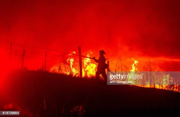 A firefighter sprays down flames as the Detwiler fire rages on near the town of Mariposa California on July 18 2017 California has suffered...