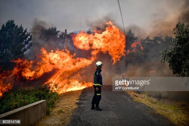 TOPSHOT A firefighter stands in the middle of a road near flames blazing near the village of Sanguinheira in Macao central Portugal on July 25 2017 /...