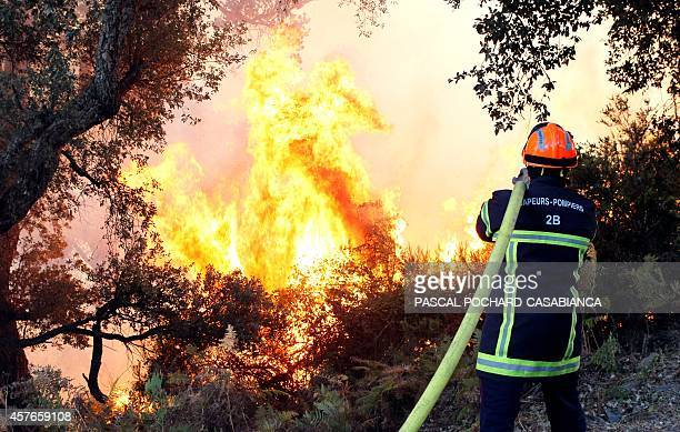 A firefighter tries to extinguish a wildfire near Talasani Corsica on October 22 2014 The fire had spread rapidly due to high winds AFP PHOTO /...