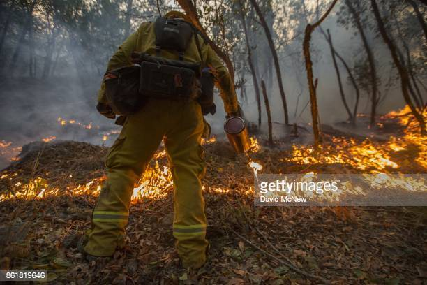 A firefighter uses a drip torch to set a backfire to protect houses in Adobe Canyon during the Nuns Fire on October 15 2017 near Santa Rosa...