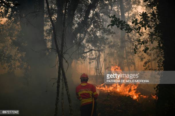A firefighter using a hose tries to stop flames during a wildfire threatening the village of Torgal Castanheira de Pera on June 18 2017 A wildfire in...