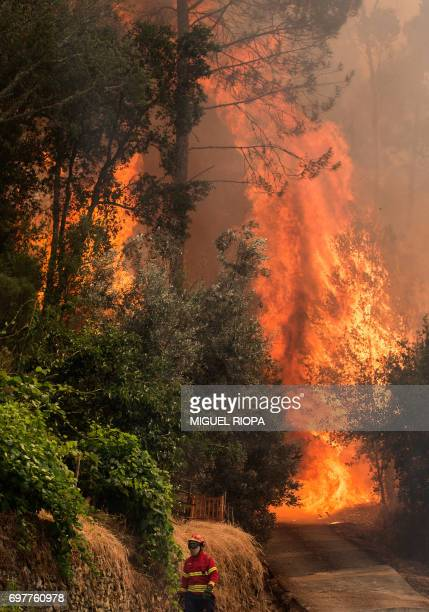 TOPSHOT A firefighter walks close to a wildfire in Carvalho next to Pampilhosa da Serra on June 19 2017 More than 1000 firefighters are still trying...