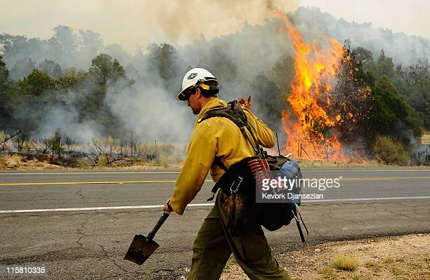 A firefighter walks on the opposite side of the road after setting a backburn on Highway 191 in an attempt to control a raging wildfire on June 10...