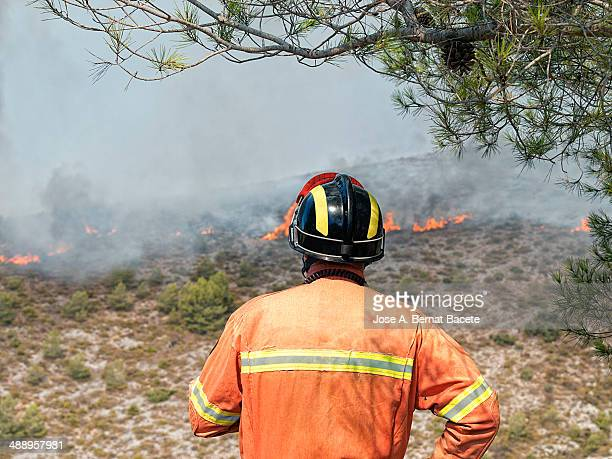 Firefighter watching fire flames in a forest
