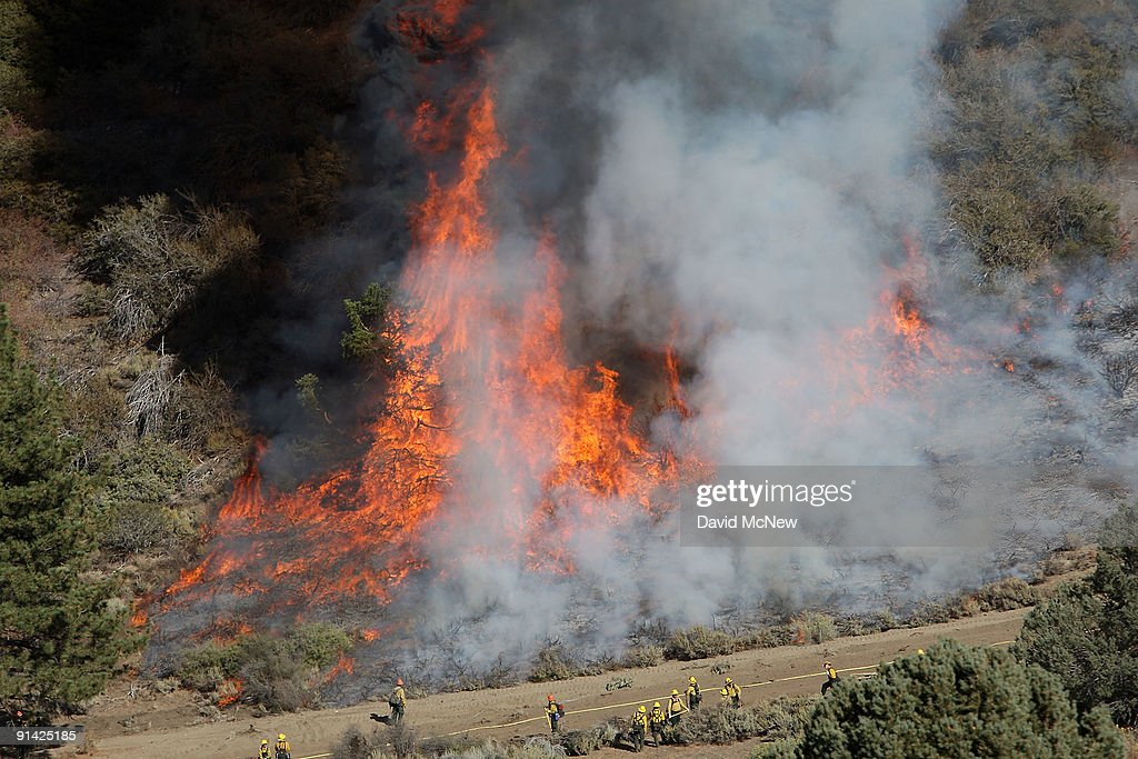Firefighters are dwarfed by flames as they set a backfire to try to prevent the 3500acre Sheep fire from reaching the town of Wrightwood a halfmile...