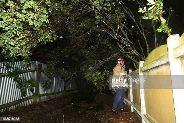 Firefighters assist as high winds from Cyclone Cook down trees on April 13 2017 in Napier New Zealand Heavy rain has hit New Zealand's North Island...