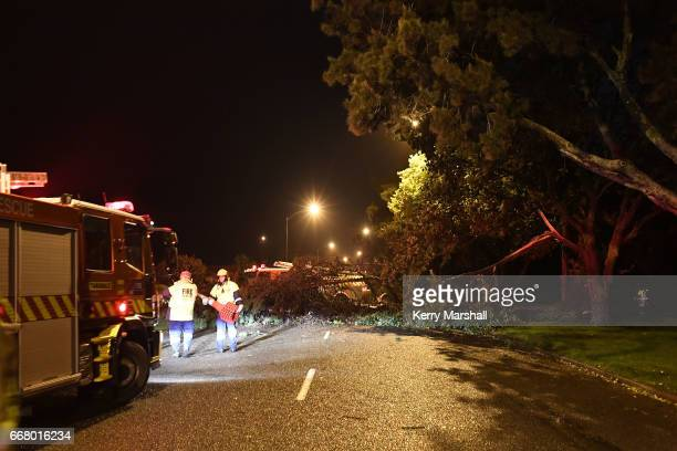 Firefighters assist members of the public as high winds from Cyclone Cook bring trees down onto houses and roads on April 13 2017 in Napier New...