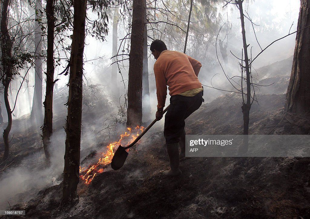 Firefighters, Civil Defense personnel and local volunteers try to extinguish a forest fire on January 11, 2013, on a hill in the municipality of Cota, on the outskirts of Bogota, Colombia. According to partial data from the Risk Management Office, in the early days of 2013 forest fires have affected 49 municipalities in12 departments of Colombia, caused by the dry season, which began in December 2012 and will last until next March. AFP PHOTO/Nestor SILVA