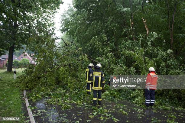 Firefighters clear the road after a storm on June 22 2017 in Ebstorf / AFP PHOTO / dpa / Philipp Schulze / Germany OUT