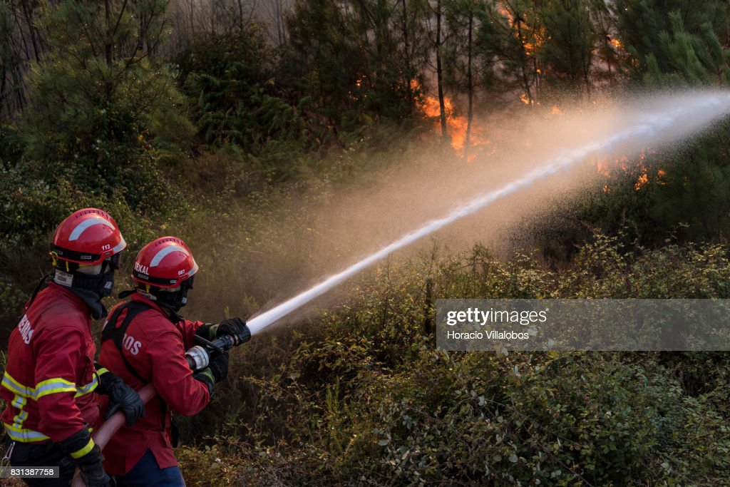 Firefighters combat flames at a forest fire on August 14, 2017 in Vila de Rei, Portugal. More than a thousand firefighters and military personnel have joined efforts trying to control the numerous fires in the country. The Portuguese government has asked for EU help to combat hundreds of forest fires in both Centro and Norte regions of the country.