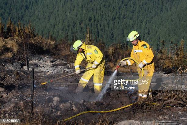 Firefighters dig out and dampen down hotspots on February 20 2017 in Christchurch New Zealand Firefighters continue to work to contain fires that...