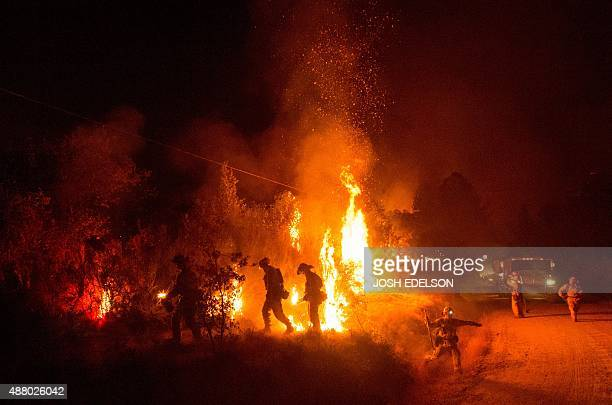 Firefighters light a backfire while battling the Butte fire near San Andreas California on September 12 2015 Wildfires have spread rapidly through...