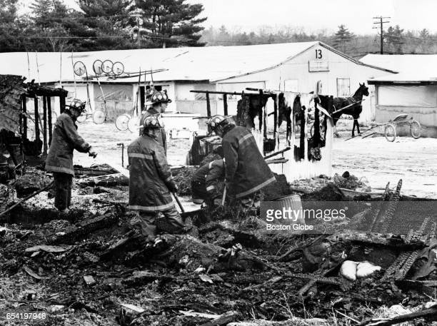 Firefighters search through the rubble where 14 horses died in a fire Feb 19 1977 Fourteen harness racing horses trapped in their flaming stables...