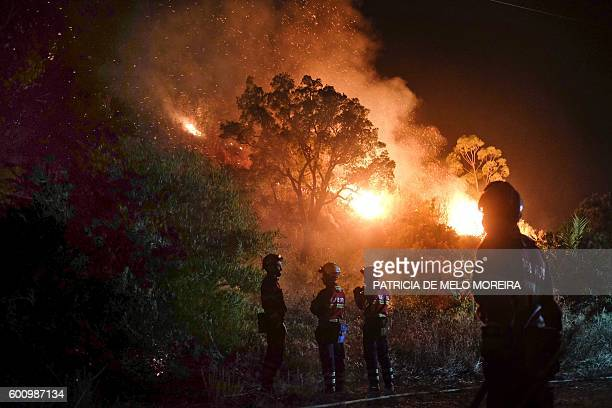Firefighters stand near a wildfire at Monchique Algarve southern of Portugal on September 9 2016 Portugal's Algarve tourist region was the latest to...