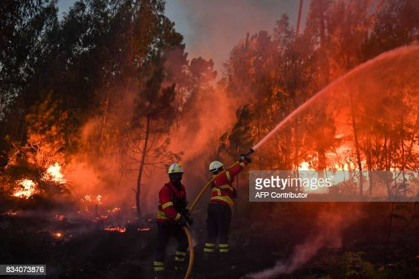 Firefighters tackle a wildfire in Macao on August 17 2017 / AFP PHOTO / PATRICIA DE MELO MOREIRA