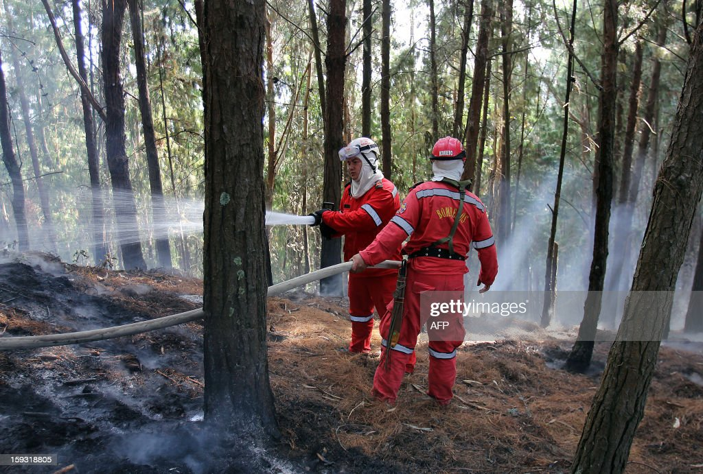 Firefighters try to extinguish a forest fire on January 11, 2013, on a hill in the municipality of Cota, on the outskirts of Bogota, Colombia. According to partial data from the Risk Management Office, in the early days of 2013 forest fires have affected 49 municipalities in12 departments of Colombia, caused by the dry season, which began in December 2012 and will last until next March. AFP PHOTO/Nestor SILVA