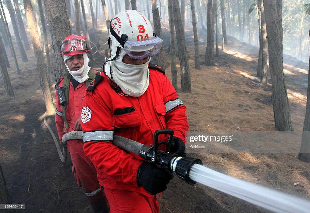 Firefighters try to extinguish a forest fire on January 11, 2013, on a hill in the municipality of Cota, on the outskirts of Bogota, Colombia. According to partial data from the Risk Management Office, in the early days of 2013 some 79 forest fires have affected 49 municipalities in12 departments of Colombia, caused by the dry season, which began in December 2012 and will last until next March. AFP PHOTO/Nestor SILVA