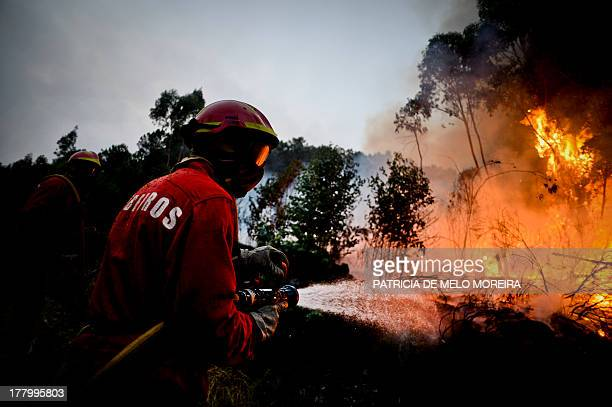 Firefighters try to extinguish a wildfire in Talhadas near Oliveira de Frades central Portugal on August 26 2013 AFP PHOTO/ PATRICIA DE MELO MOREIRA