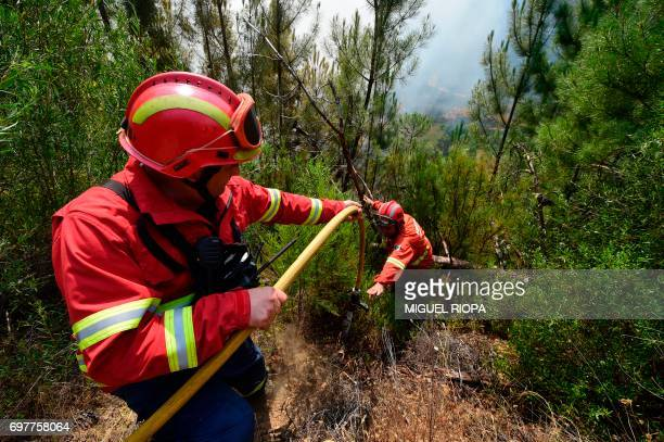 Firefighters work in Carvalho next to Pampilhosa da Serra on June 19 2017 More than 1000 firefighters are still trying to control the huge forest...