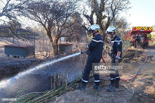 Firefighters work to contain embers on September 6 2016 in Paziols southeastern France after a fire burned between 800 and 1000 hectares near Tuchan...