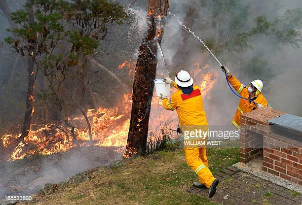 Firefighters work to contain fires from a resident's backyard at Faulconbridge in the Blue Mountains on October 22 2013 Firefighters on October 22...