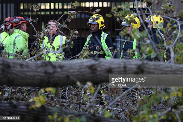 Firemen and emergency workers inspect the scene where a woman was killed as a tree was blown over in high winds on October 21 2014 in Knightsbridge...