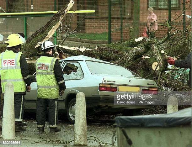 Firemen at the scene of an accident on the A435 Alcester Road South in Kings Heath Birmingham where a tree blown down by severe winds crushed three...