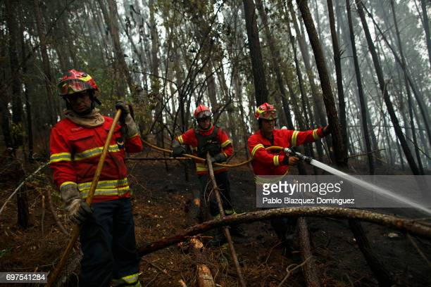 Firemen work on a forest fire after a wildfire took dozens of lives on June 19 2017 near Pedrogao Grande in Leiria district Portugal On Saturday...