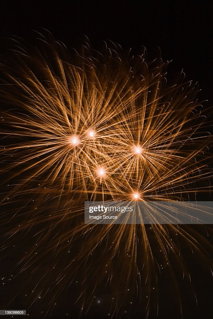 Fireworks in the night sky : Stock Photo