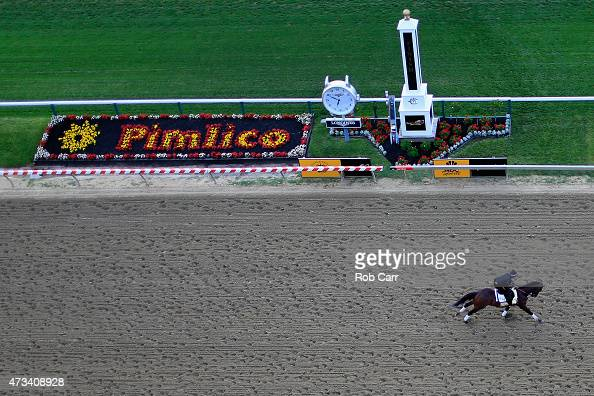Firing Line trains on the track for the 140th Preakness Stakes at Pimlico Race Course on May 15 2015 in Baltimore Maryland
