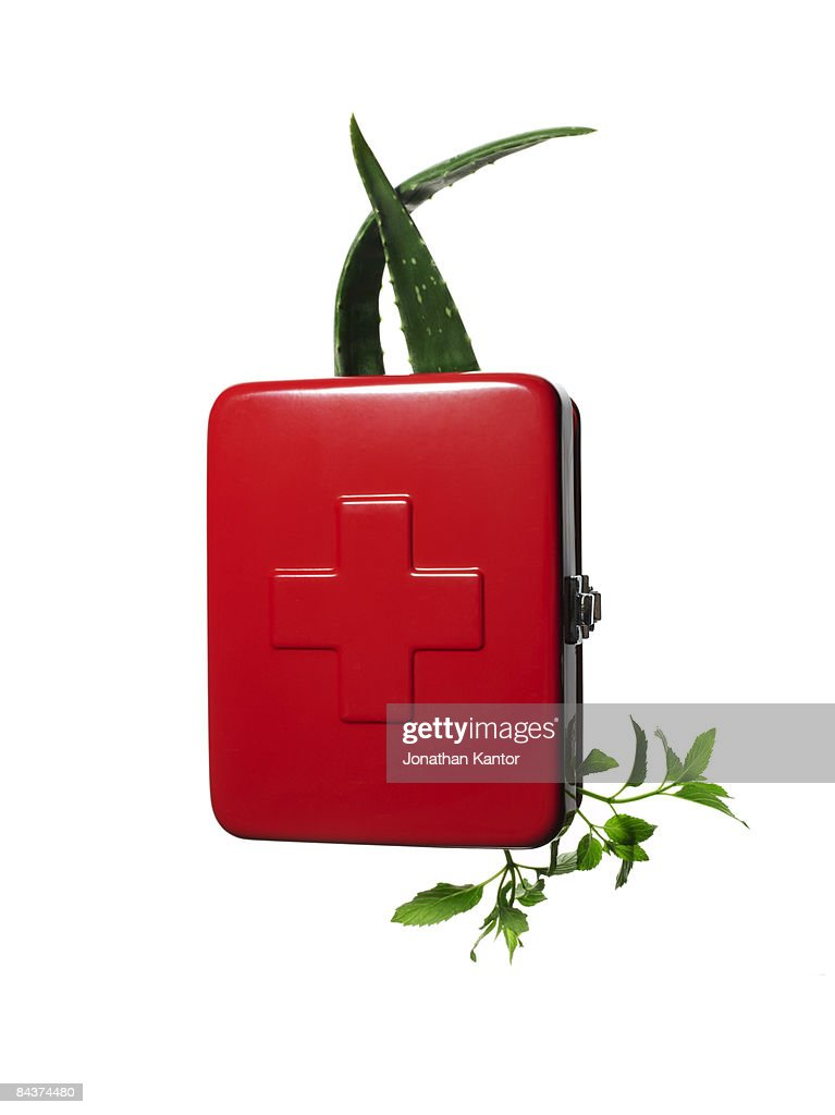 First Aid box with Aloe and herbs : Stock Photo