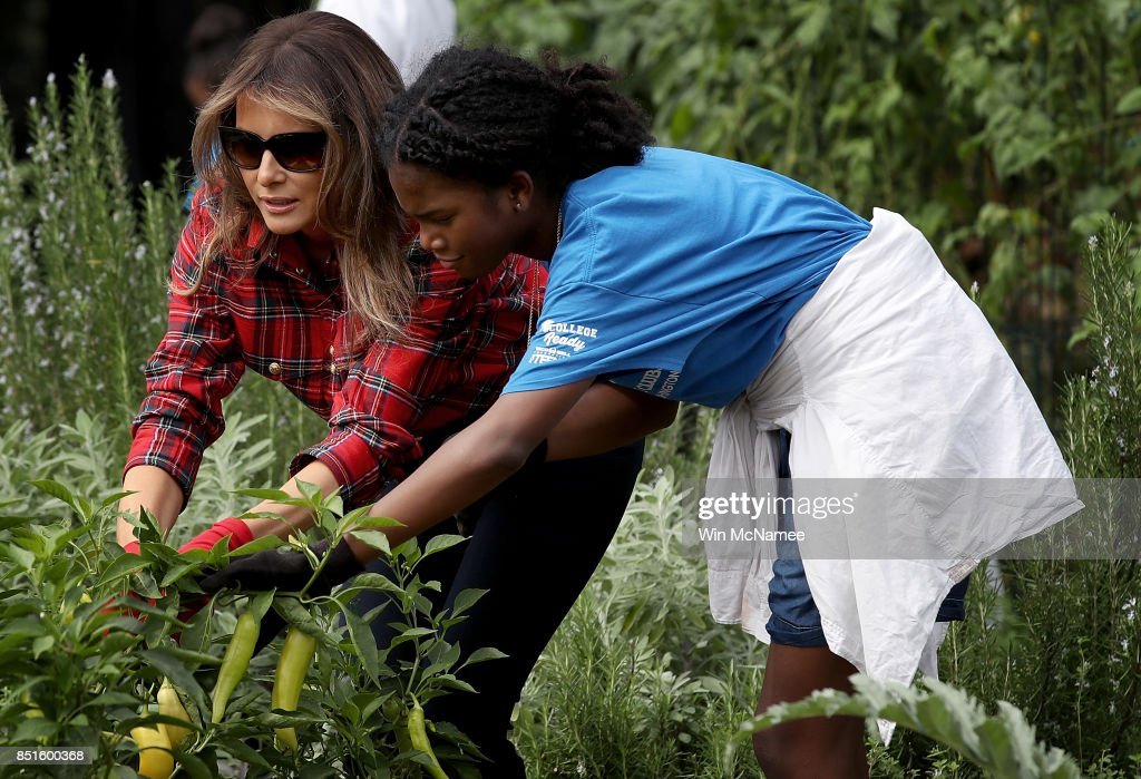 First Lady In Plaid, Gardens At The White House