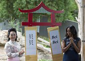 First Lady Michelle Obama and Madame Peng Liyuan First Lady of the People's Republic of China unveil the name of the baby panda which they chose at...