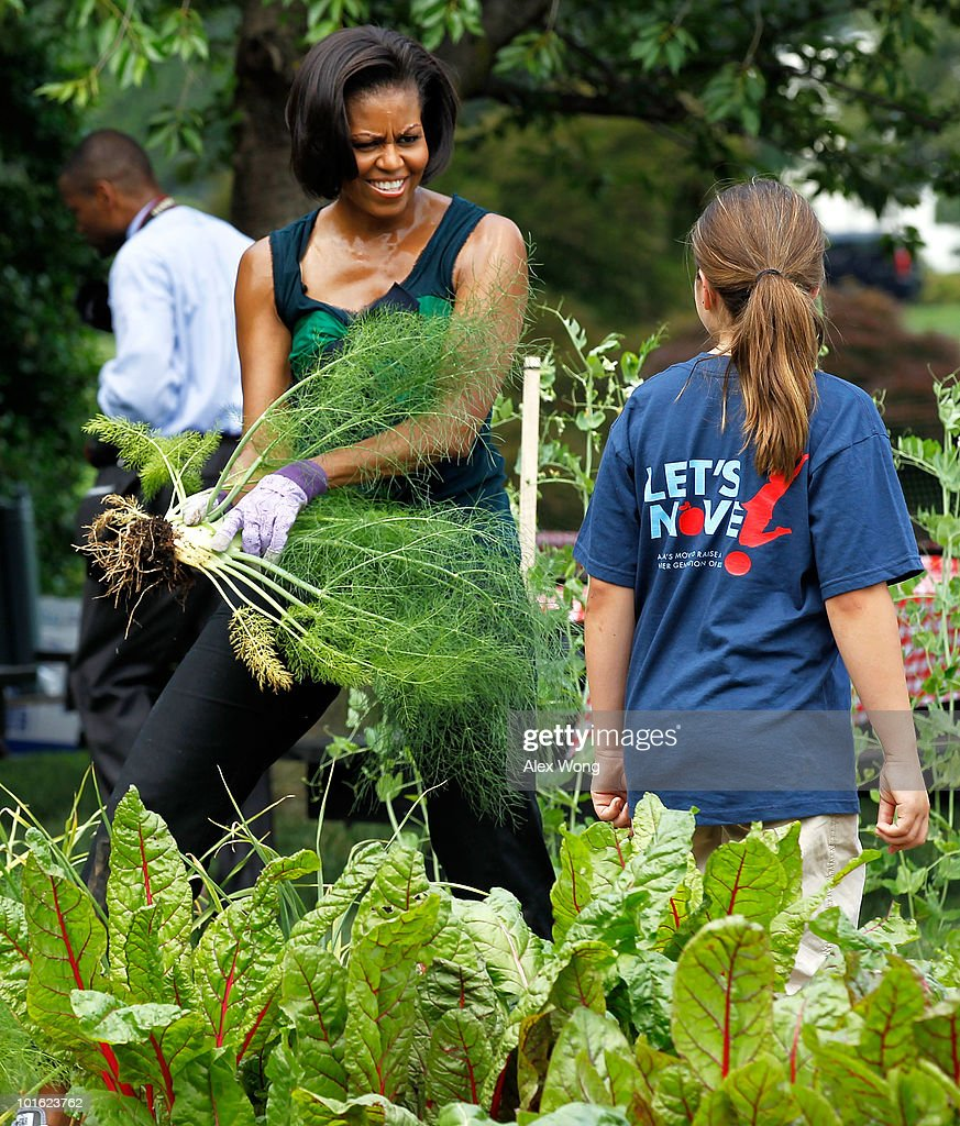 Michelle Obama Hosts Chefs Harvests From White House Garden Getty Images