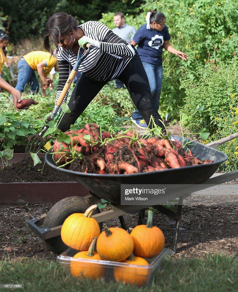 White House Kitchen Garden Michella Obama Hosts Fall Harvest Event At White House Kitchen