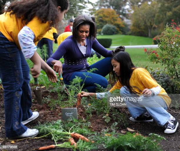 US First lady Michelle Obama hosts a fall harvest of the White House vegetable garden with help of students from Washington's Bancroft and Kimball...